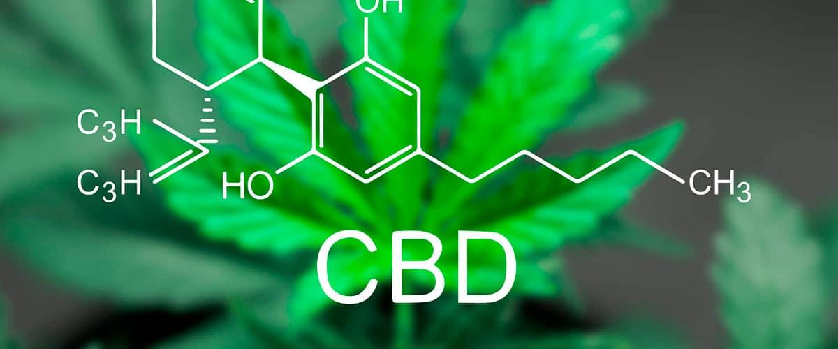 ¿Qué es el CBD? Comprar Cbd en Chile.