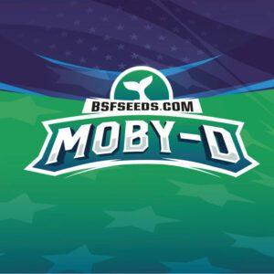 BSF - Moby-D XXL - Semillas Autoflorecientes
