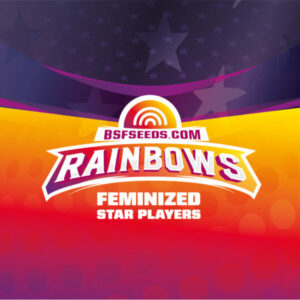 BSF Seeds - Rainbows - Semillas Fem (x2)